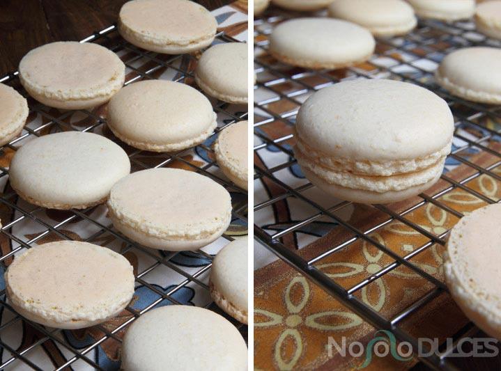 No solo dulces – Macarons de chocolate picante y pipas caramelizadas